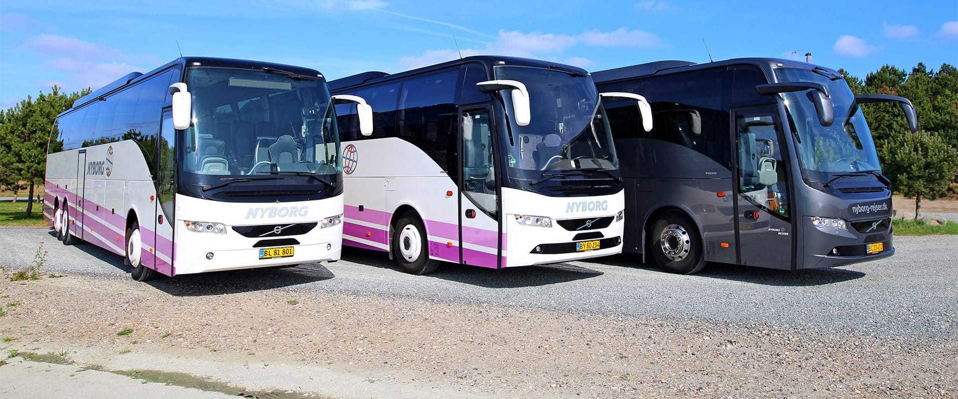 3-busser-paa-stribe-Nyborg Rejser