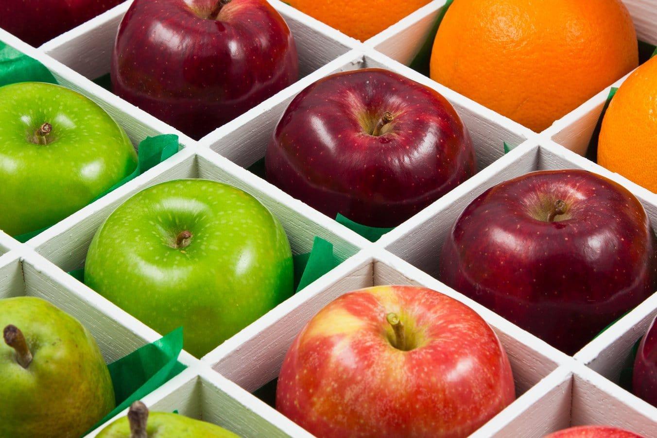Nyborg Rejser byder på frugt